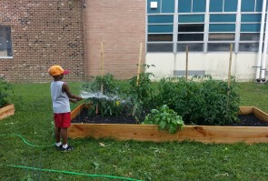 Community Learning Garden (Ft)